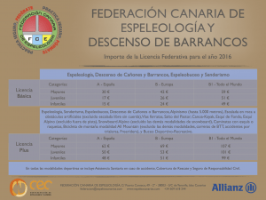 Importe licencias 2016 FCE 2